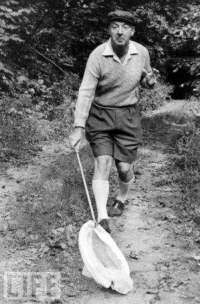 Vladimir Nabakov in shorts