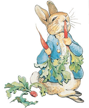 potter_peterrabbit