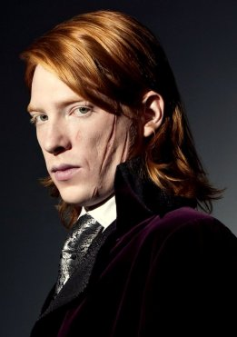 Bill Weasley: Oldest Brother, works as a curse breaker for Gringotts Bank